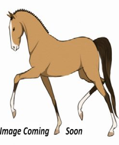 Aussie Browband Supplies Products and Services